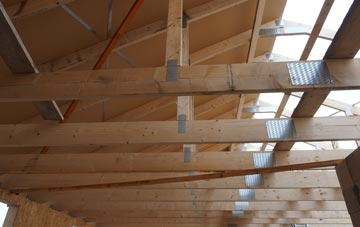 Lady roof truss costs